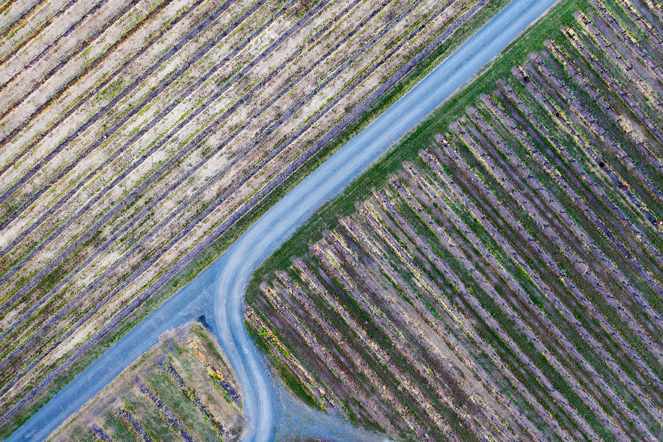 Aerial-Photographers-Napa-Vally